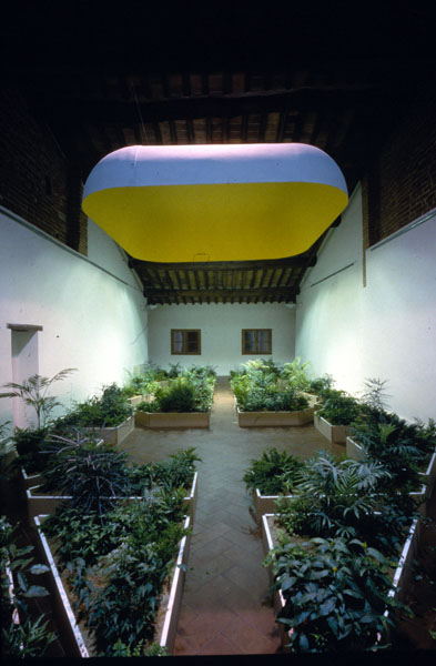 Giardino. Casa Masaccio - San Giovanni Valdarno